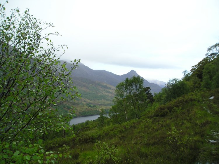 View looking over to Beinn na Caillich